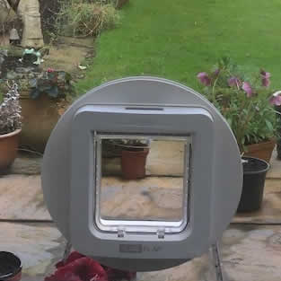 Cat Flap Installations Handforth